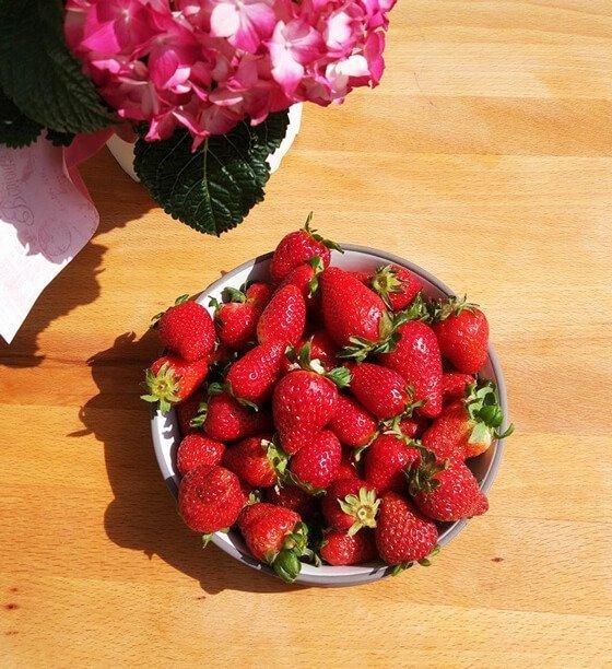 ягоди за сорбе