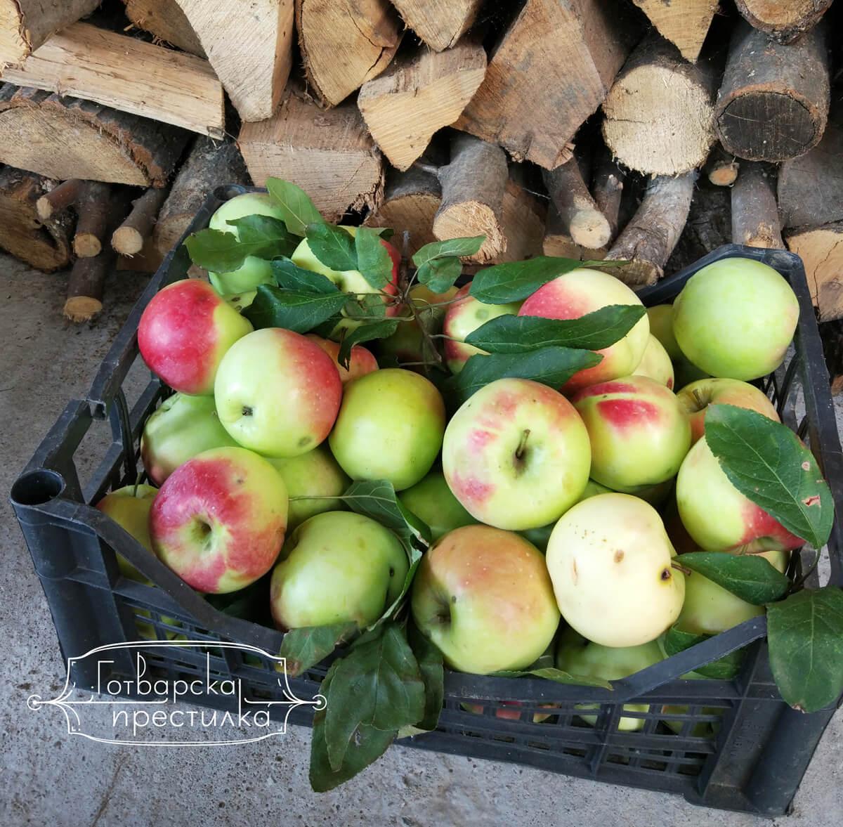 Домашен ябълков оцет – 2 рецепти