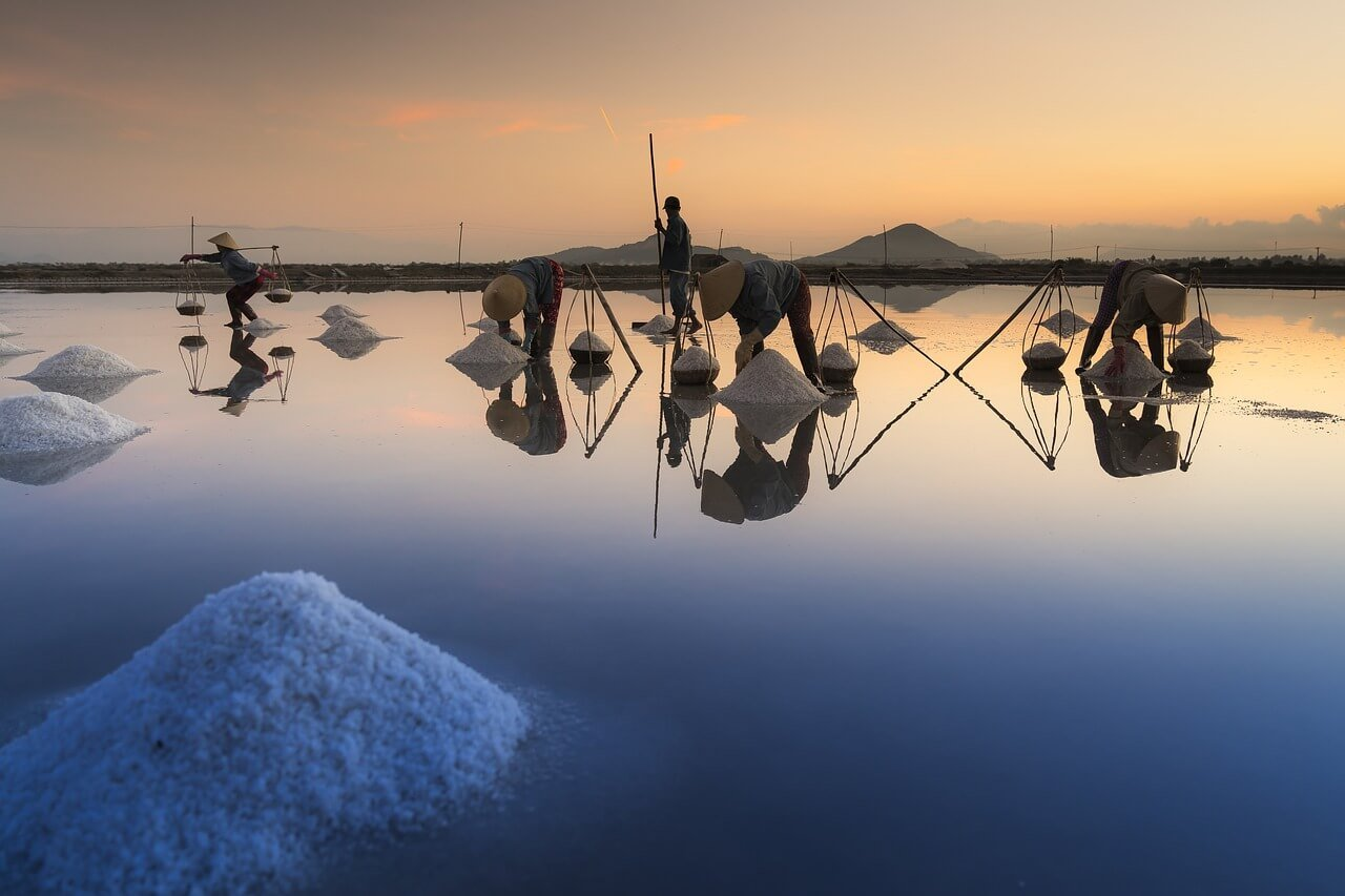 каква е разликата в ядливите соли - добив на морска сол