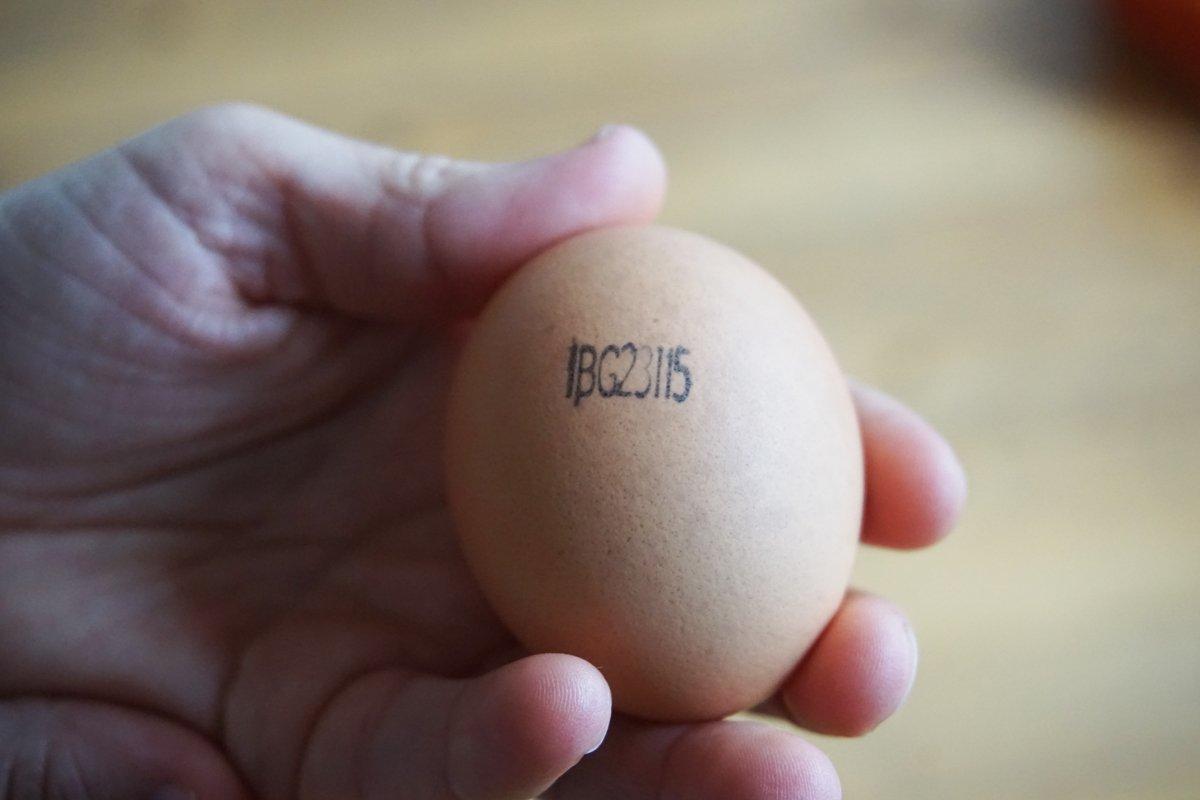 каква информцаия носи печата на яйцата