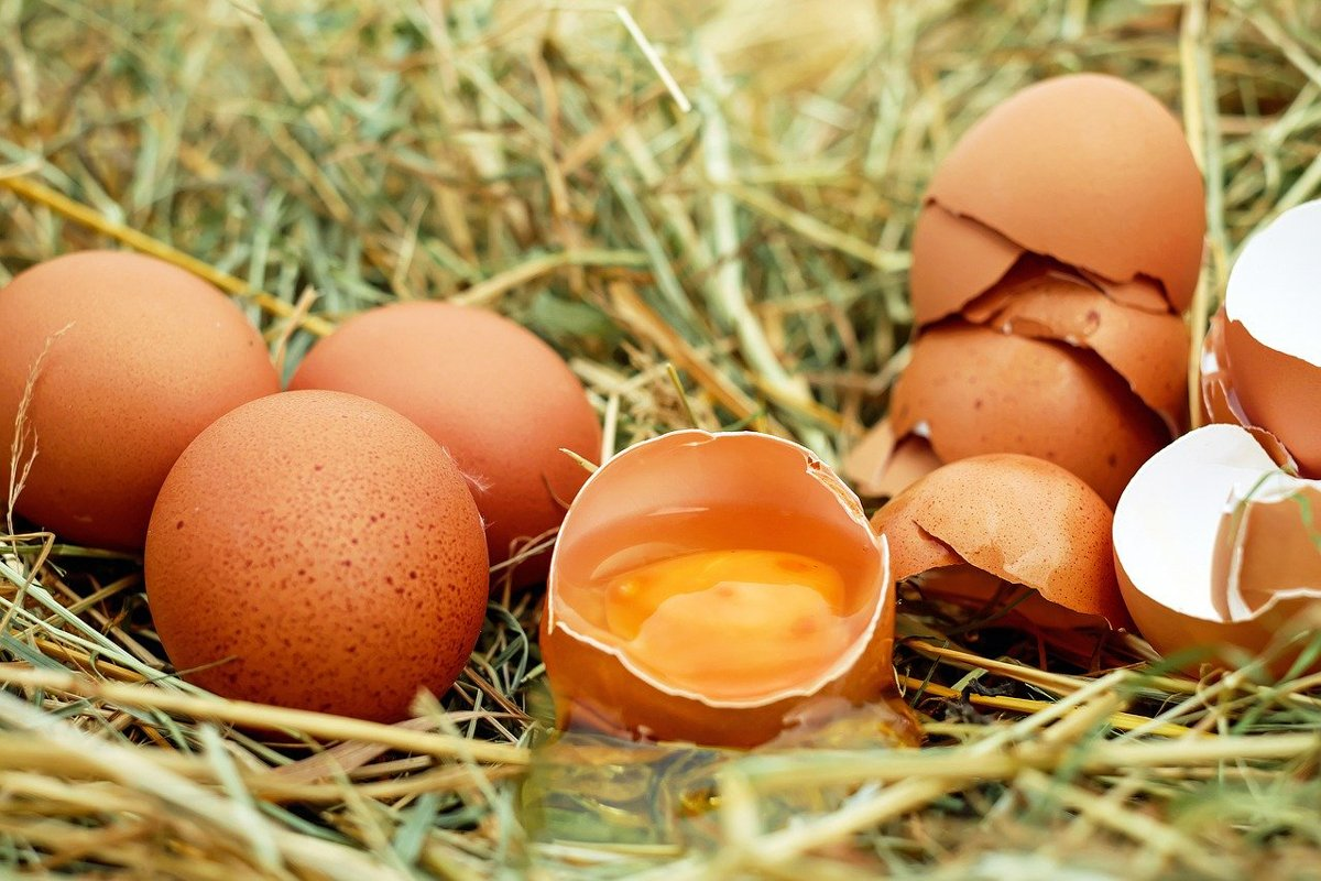 как да познаем колко са пресни яйцата